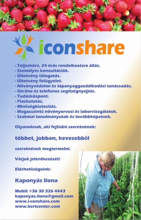 I-Con Share ismertető 2